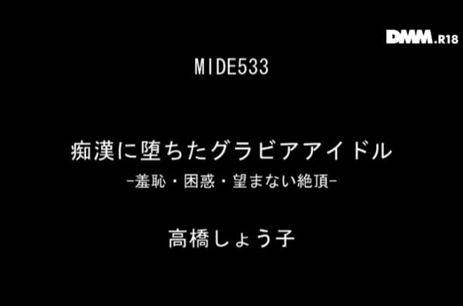 高橋しょう子_痴漢AV (13)