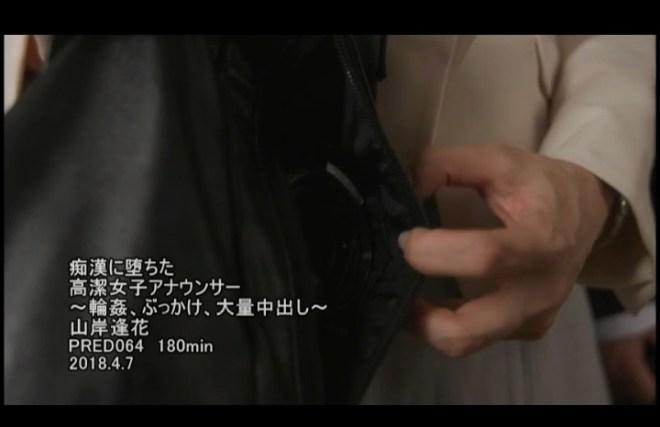 山岸逢花 (58)