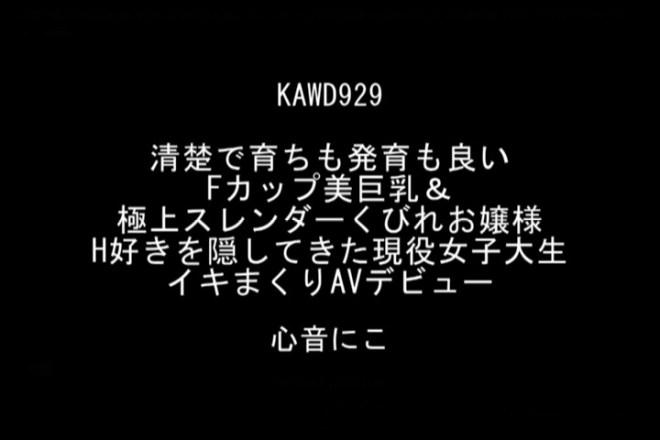 心音にこ (30)