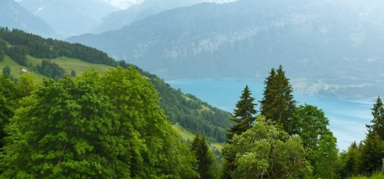 Svizzera: a spasso nella natura per un'estate detox e antistress