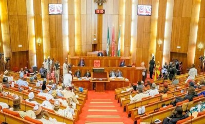 Senate Turns Down Buhari $30bn Loan Request