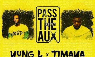 Yung L ft. Timaya – Pass The Aux (Remix)