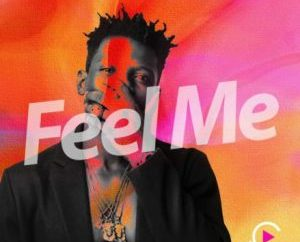 Terry Apala – Feel Me