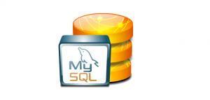 php-mysql-select