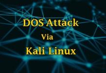 Kali Linux Tutorial