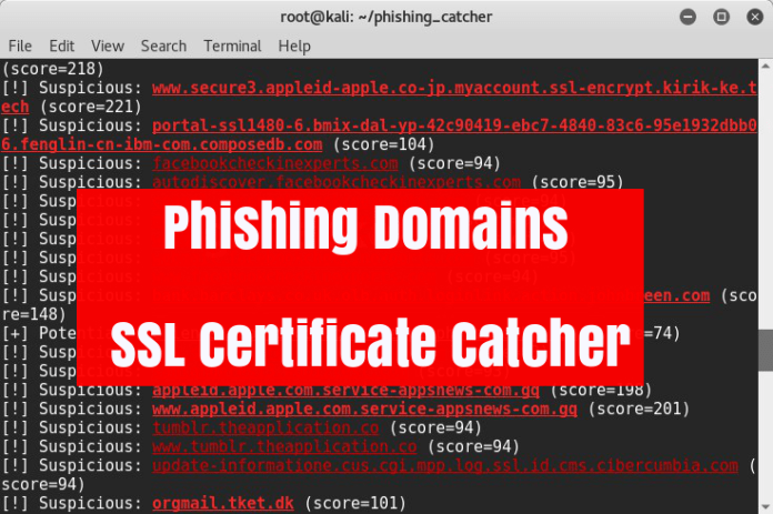Malicious Phishing Domain
