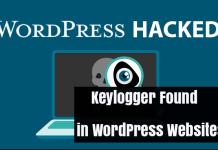 WordPress Keylogger