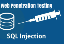 professional penetration testing creating and learning in a hacking lab