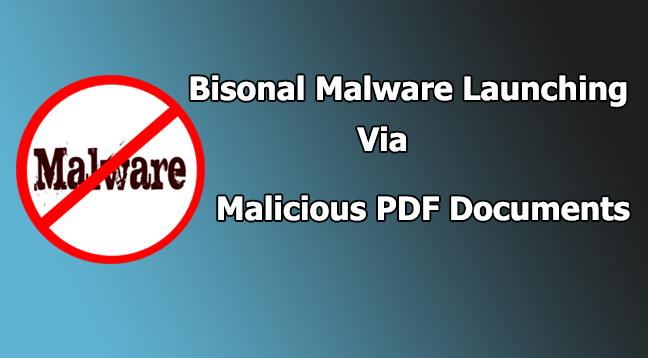 Bisonal malware