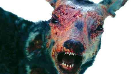 Attack of Lederhosen Zombies 5