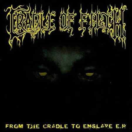 Top Ten Cradle