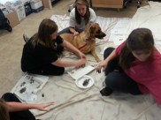 "Wall-E and staff hard at work to ""paw-tograph"" almost 200 pieces of artwork."