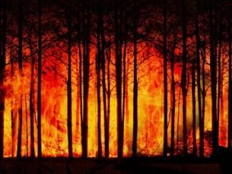 Desastres ambientais custaram US$3 trilhões em 50 anos