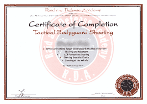 Raid and Defense Academy - Tactical Bodyguard Shooting