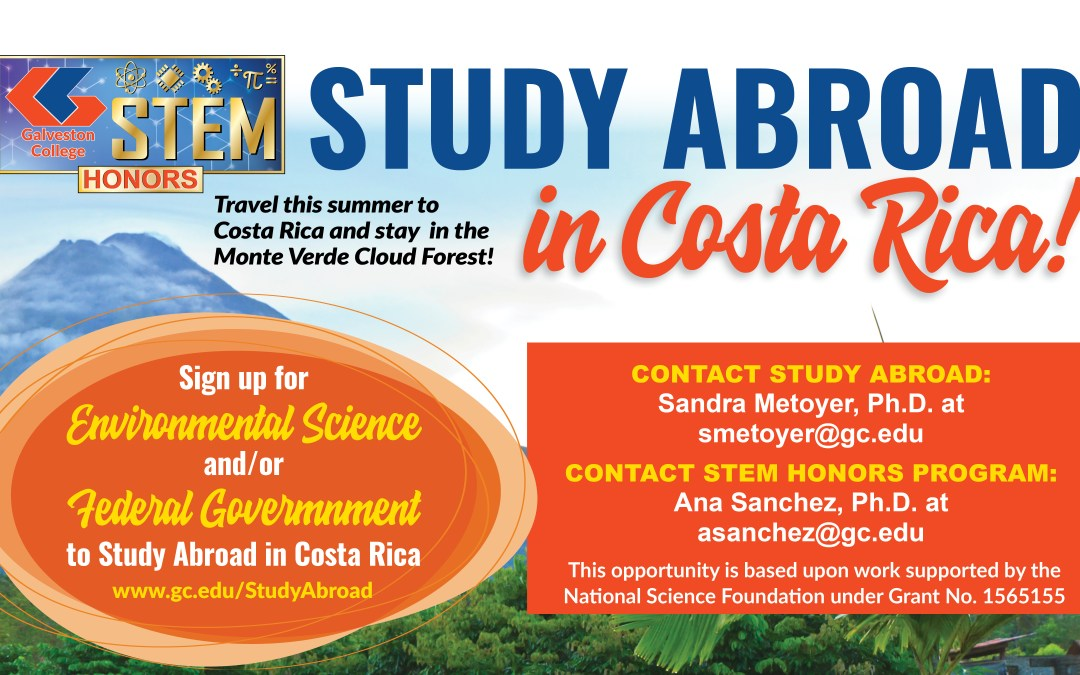 Study abroad in Costa Rica and stay in the Monteverde Cloud Forest Reserve
