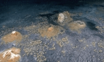 "Shipwrecks, Oil Seeps, and Salt ""Volcanoes"" 