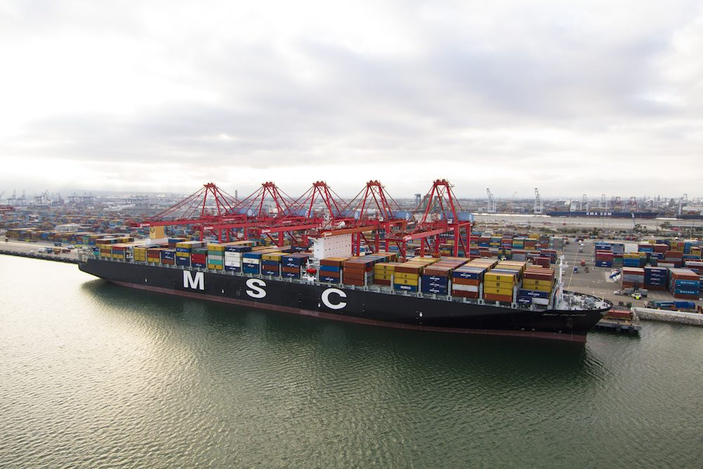 The MSC Flavia is docked at Pier T in the Port of Long Beach. File Photo: MSC