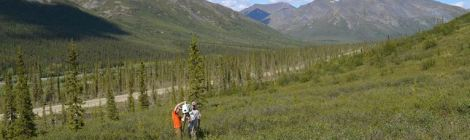 9/14 Colloquium: Northern #Peatlands & the Hyperactive #Holocene #CarbonCycle
