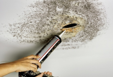 10 Hazardous Effects of Water Damage to Your house