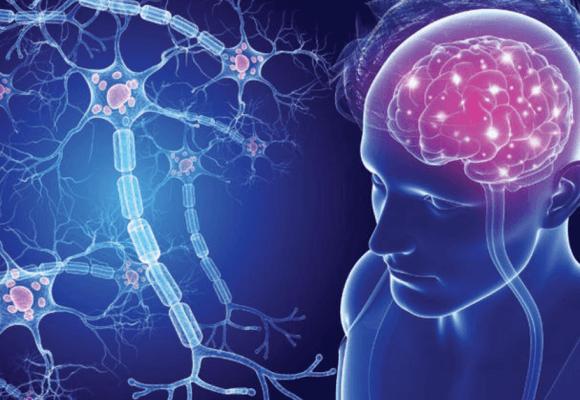 Esclerose múltipla, uma doença que dá sinais