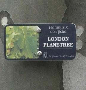 LondonPlane