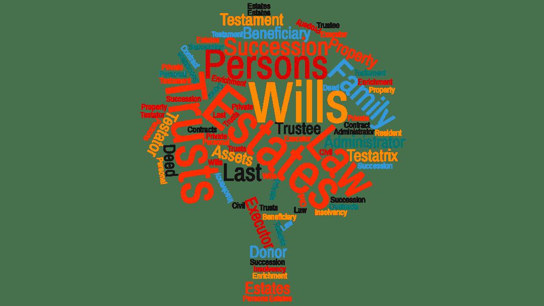 Estates, Wills & Trusts Practice Home