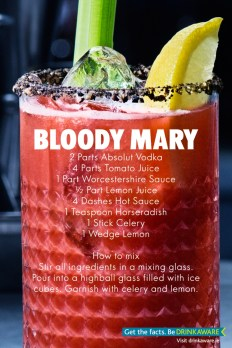 Absolut bloody mary which will be available at Body and Soul 2016