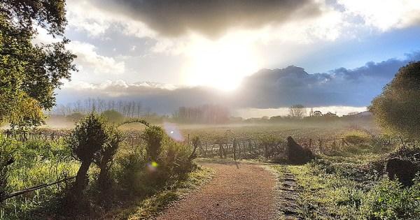 Following the Camino