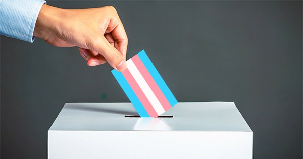 A hand casting a vote putting a card with the trans flag in a box