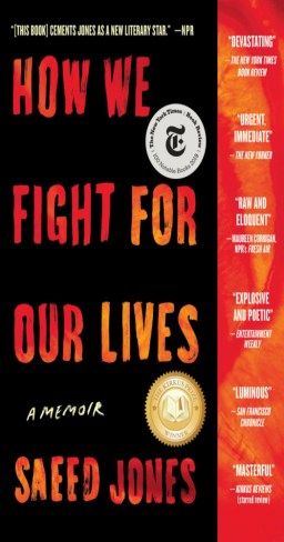 "Cover for ""How We Fight For Our Lives"""