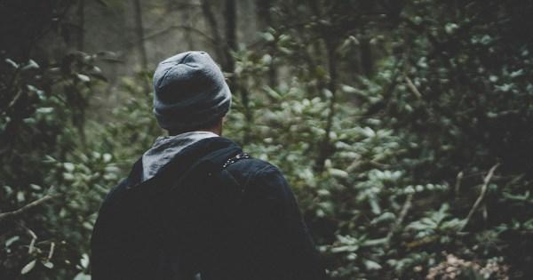 A man walks through a wooded area