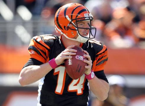 2014 NFL Projections: The AFC North