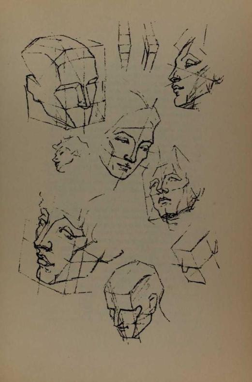anatomia-constructiva-george-bridgman-rostro-perspectiva