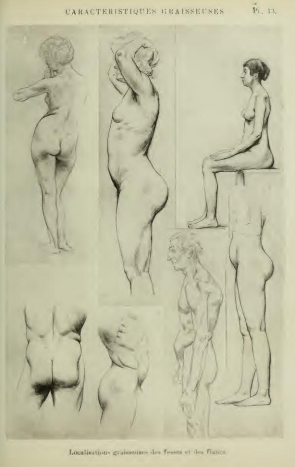 anatomia-humana-femenina-caracteristicas-grasas-cuerpo-femenino