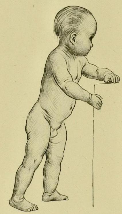 anatomia-humana-para-artistas-un-niño-aprendiendo-a-caminar