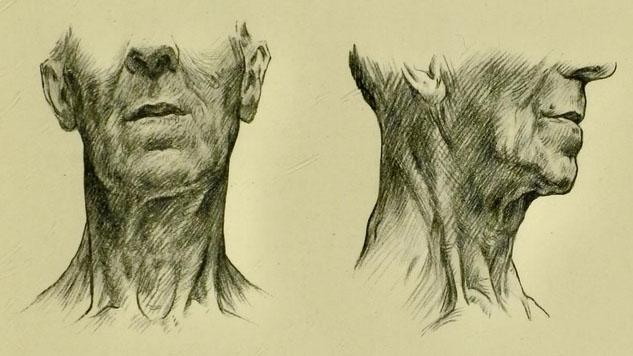 anatomia-humana-para-artistas-marcas-del-cuello-de-un-anciano