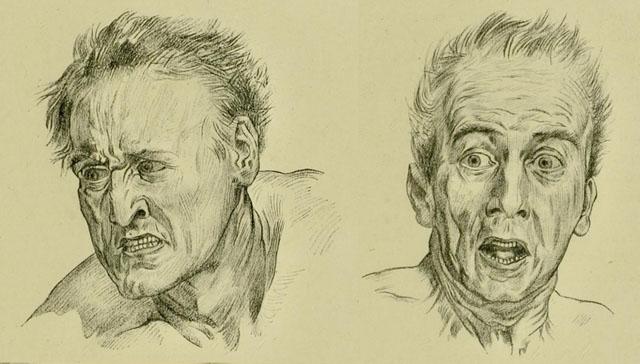 anatomia-humana-para-artistas-rostros-expresando-terror-y-enojo