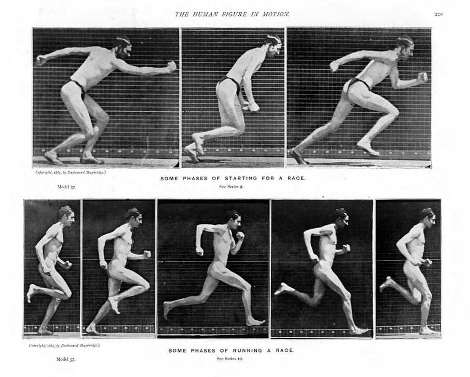 La_figura_humana_en_movimiento_Eadweard_Muybridge_page_201