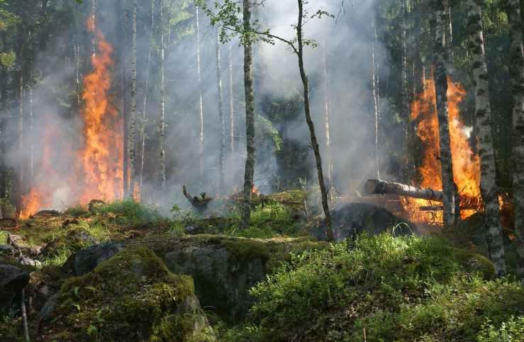 Esri Geodatabase for Wildfire Defense