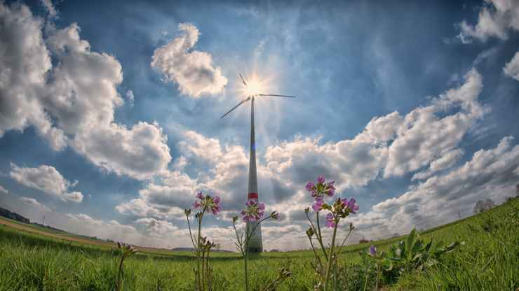 explore various aspects of energy programs in the state