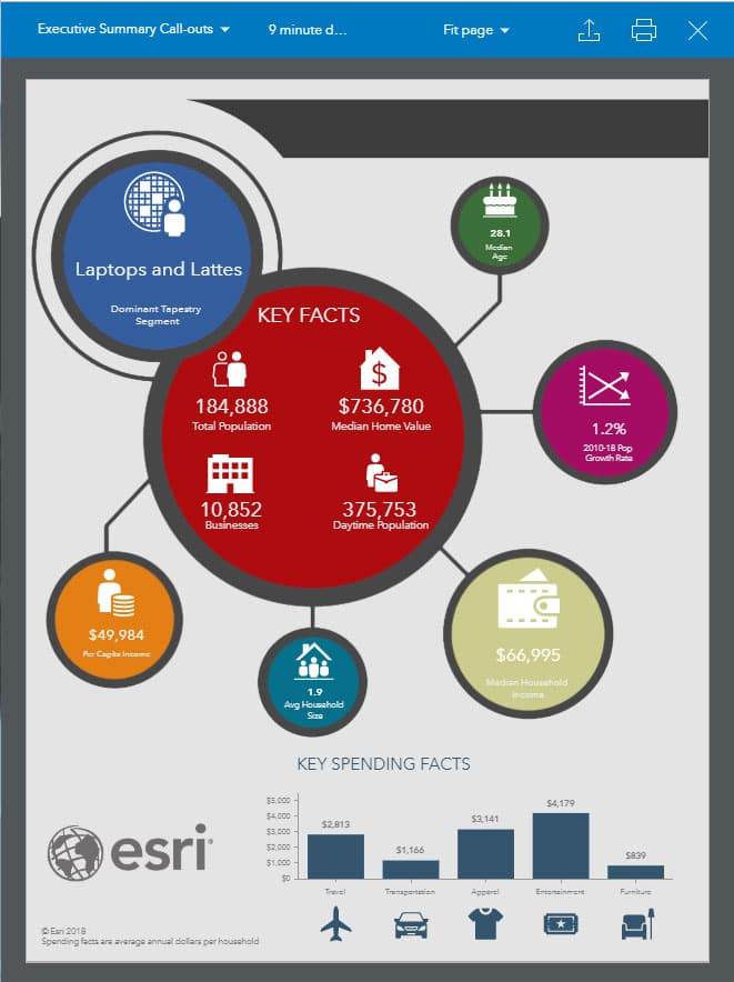 Executive Summary Call-outs Infographics for NetSuite