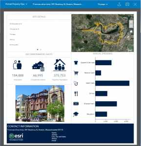 netsuite-geobusiness-Sales-Insights-infographic-portrait-property-flyer
