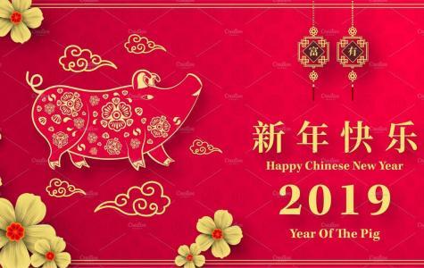 xīn nián kuài lè – Happy New Year!