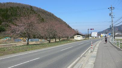 2007_0415_101948aa_s
