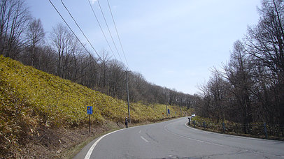 2007_0415_122501aa_s