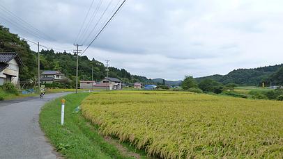 2010_0920_105018aa_s
