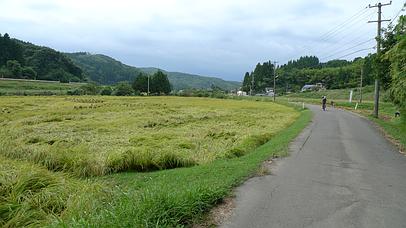 2010_0920_105402aa_s