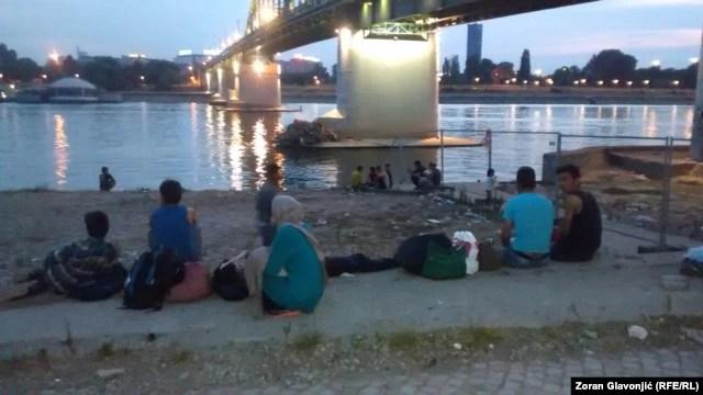 Migranti na Savi