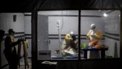Quiz - Scientists Make Progress on Ebola Virus Treatment